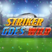 Play Striker Goes Wild