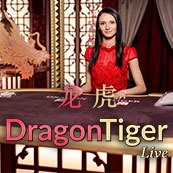 Play Live Dragon Tiger