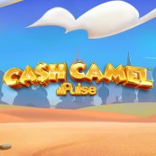 Play Cash Camel Slots