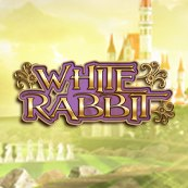 Play White Rabbit Slots