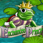 Play Enchanted Prince