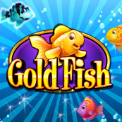 Play Gold Fish Slots
